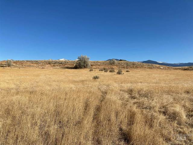 Lot 5 Country Living Sub, Salmon, ID 83467 (MLS #98787013) :: Idaho Real Estate Pros