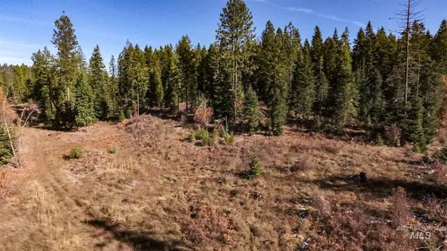 Parcel 7 Huckleberry Butte, Orofino, ID 83544 (MLS #98787161) :: Juniper Realty Group