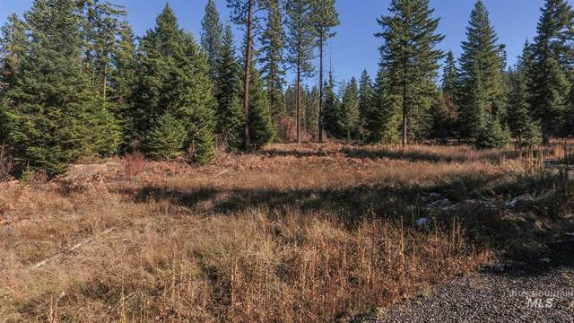 TBD Huckleberry Butte Rd. Parcel 10, Orofino, ID 83544 (MLS #98787167) :: Juniper Realty Group