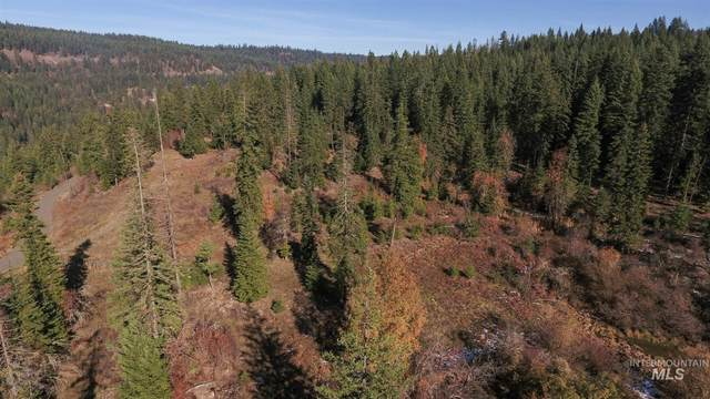 TBD Huckleberry Butte Rd. Parcel 11, Orofino, ID 83544 (MLS #98787168) :: Juniper Realty Group