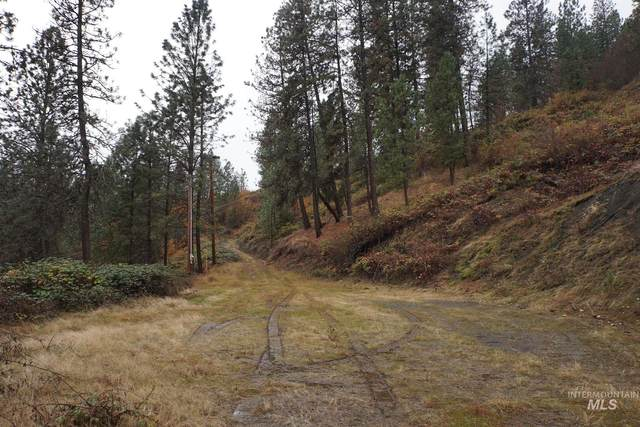 TBD Lot #1 Bobcat Drive, Orofino, ID 83544 (MLS #98787636) :: Juniper Realty Group
