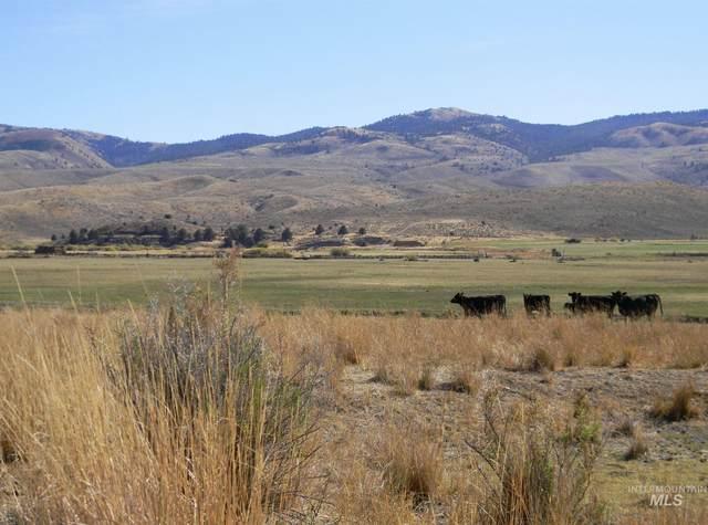 24252 Hwy 245, Hereford, OR 97837 (MLS #98788197) :: Boise River Realty