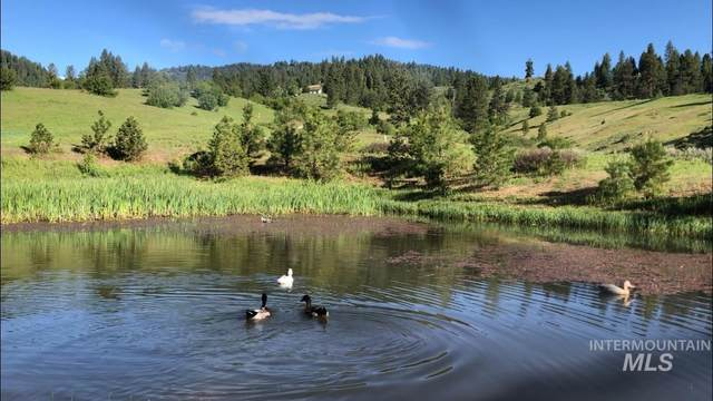 Lot 35 Pine Heights, Idaho City, ID 83716 (MLS #98789042) :: Shannon Metcalf Realty