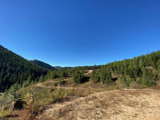 TBD Wagner Meadows-Parcel 6, Harvard, ID 83834 (MLS #98789318) :: Team One Group Real Estate