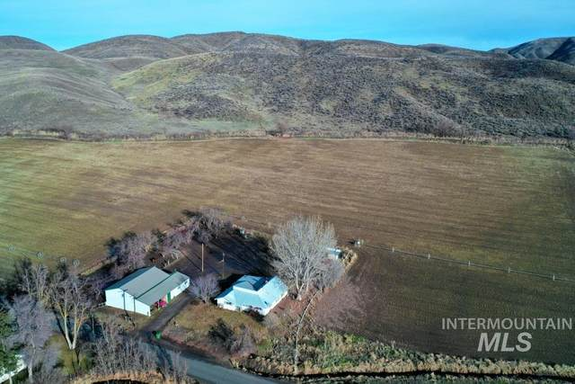 1132 Mann Creek Rd, Weiser, ID 83672 (MLS #98790369) :: Bafundi Real Estate