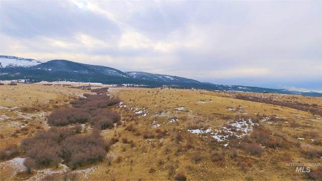 TBD White Tail Drive, Grangeville, ID 83530 (MLS #98790518) :: Team One Group Real Estate