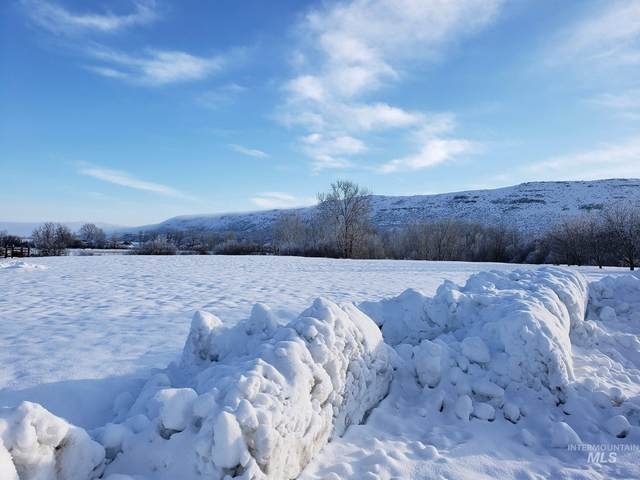 TBD Eagle Rd, Cambridge, ID 83610 (MLS #98790695) :: Beasley Realty
