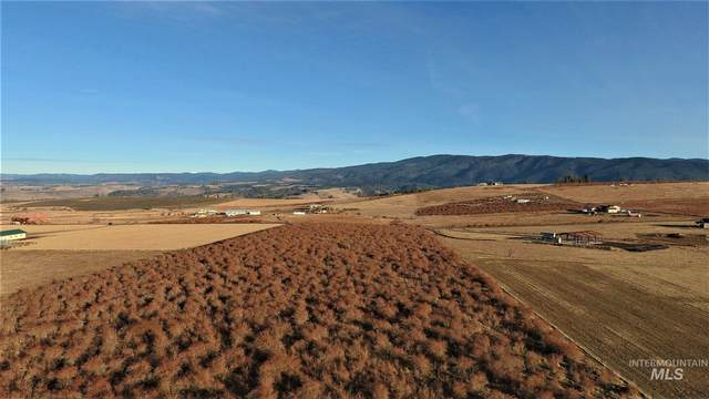 TBD Golden Acres Drive, Grangeville, ID 83530 (MLS #98791095) :: The Bean Team