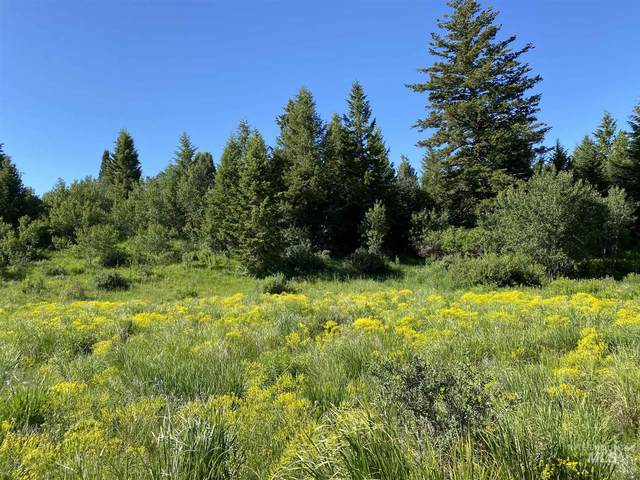 TBD Fish Creek, Lava Hot Springs, ID 83246 (MLS #98791200) :: Team One Group Real Estate