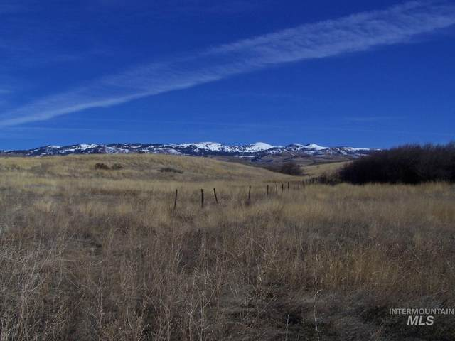 TBD Trail Ln, Council, ID 83612 (MLS #98791233) :: Minegar Gamble Premier Real Estate Services