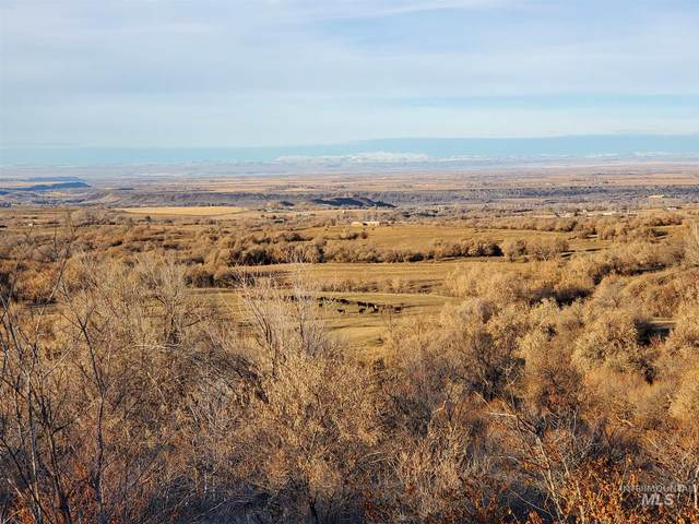 TBD Carter Pack Rd, Buhl, ID 83316 (MLS #98791293) :: Full Sail Real Estate