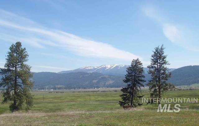 Lot 22 Timber Ridge, New Meadows, ID 83654 (MLS #98791673) :: The Bean Team