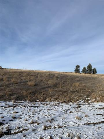 TBD Wanda Lane, Heyburn, ID 83336 (MLS #98792631) :: Minegar Gamble Premier Real Estate Services