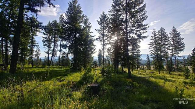 L1 Bella View Drive, Mccall, ID 83638 (MLS #98792905) :: Story Real Estate