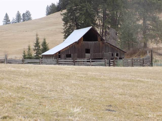 TBD Red Fir Rd, Kooskia, ID 83539 (MLS #98792974) :: Minegar Gamble Premier Real Estate Services