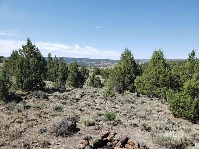 Tract 54 Triangle Ranch, Murphy, ID 83650 (MLS #98793085) :: Minegar Gamble Premier Real Estate Services