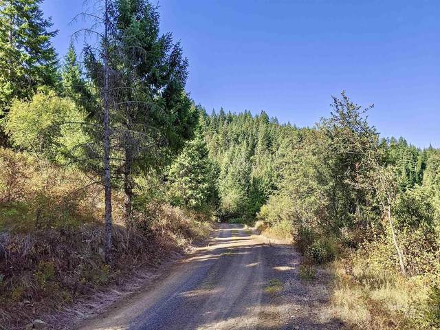 TDD Sun Mt. Rd. Parcel 2, Orofino, ID 83544 (MLS #98793478) :: Juniper Realty Group