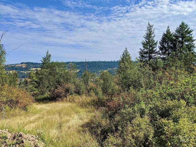 TBD Sun Mt. Rd. Parcel 3, Orofino, ID 83544 (MLS #98793481) :: Juniper Realty Group