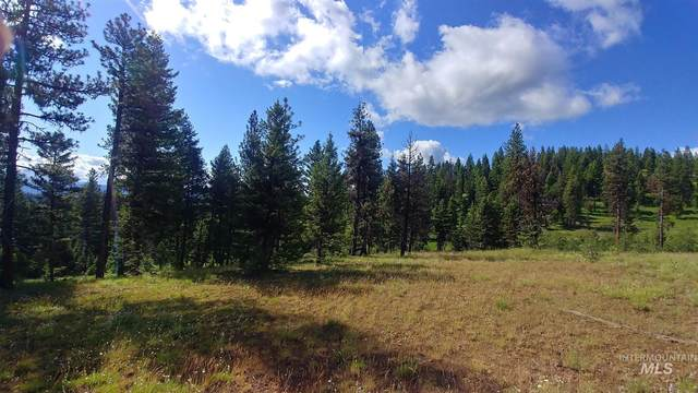 L8 Bella View Drive, Mccall, ID 83638 (MLS #98793614) :: Story Real Estate