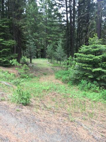 111 Jughandle Drive, Mccall, ID 83638 (MLS #98793907) :: Epic Realty