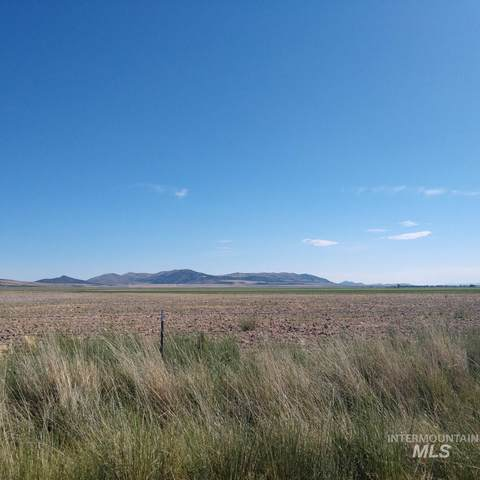 TBD W 10500 S, Stone, ID 83252 (MLS #98794140) :: Haith Real Estate Team
