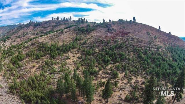 Lot 29 West Corral Flat Road, Boise, ID 83716 (MLS #98794764) :: Beasley Realty