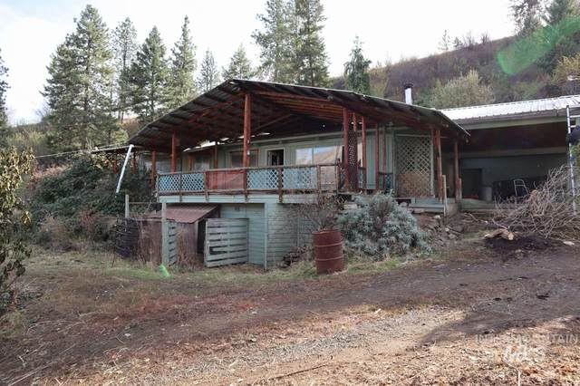 6087 Rice Creek Road, Cottonwood, ID 83522 (MLS #98795204) :: Team One Group Real Estate