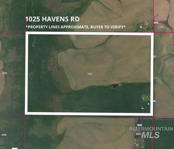 1025 Havens Rd, Kendrick, ID 83537 (MLS #98796440) :: Epic Realty