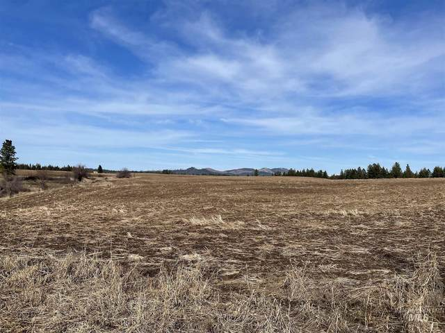 TBD 40 +/- AC East Road, Parcel #2, Deary, ID 83823 (MLS #98796791) :: Story Real Estate