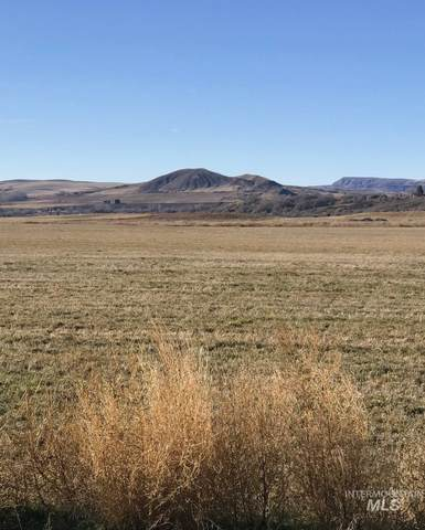 TBD 6A Clydesdale Lane, Parma, ID 83660 (MLS #98797471) :: Epic Realty