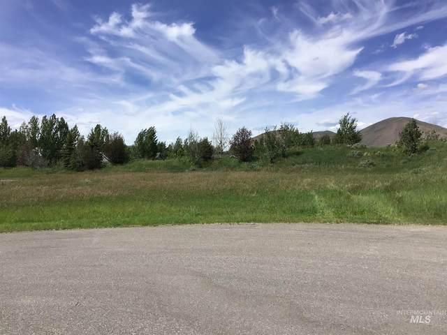 191 Stoney Cove Lane, Hailey, ID 83333 (MLS #98797673) :: Minegar Gamble Premier Real Estate Services