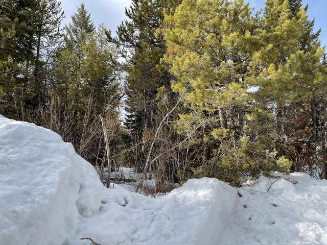 TBD Lot 42B Navajo Rd, Donnelly, ID 83615 (MLS #98797894) :: Team One Group Real Estate