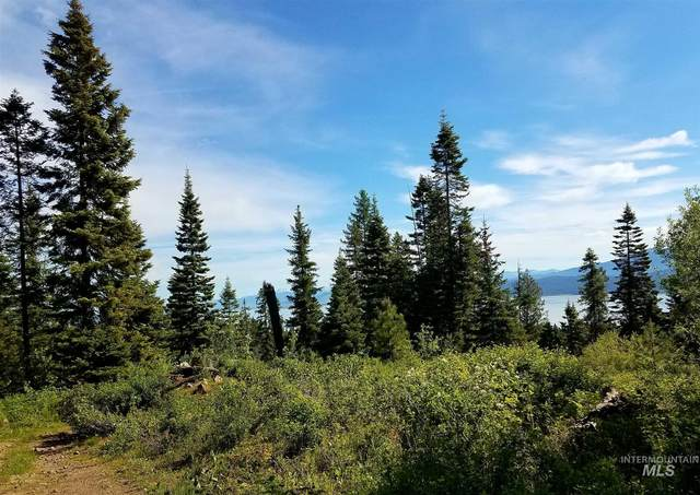TBD Anderson Creek Rd, Cascade, ID 83611 (MLS #98798024) :: Epic Realty