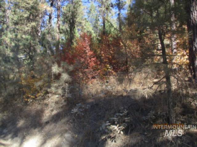 L 147 Warm Springs, Garden Valley, ID 83622 (MLS #98798065) :: City of Trees Real Estate