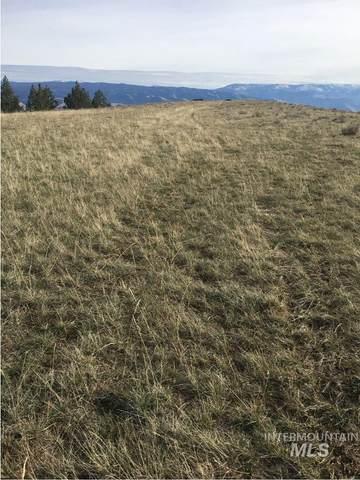 Lot 30 Elk Run Rd, Cottonwood, ID 83522 (MLS #98798180) :: Story Real Estate