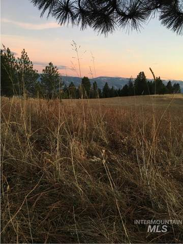 Lot 31 Elk Run Rd, Cottonwood, ID 83522 (MLS #98798183) :: Story Real Estate