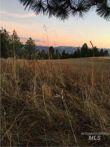 Lot 30 & 31 Elk Run Rd, Cottonwood, ID 83522 (MLS #98798184) :: Story Real Estate