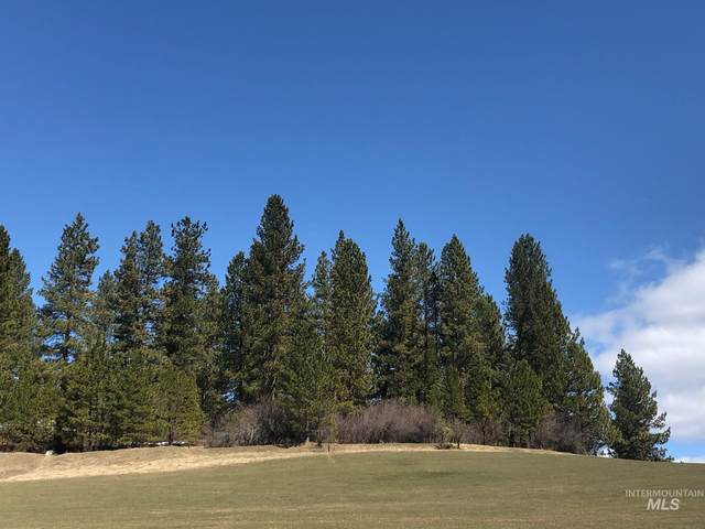 Lot 49 North Ridge At Terrace Lakes, Garden Valley, ID 83622 (MLS #98798320) :: Michael Ryan Real Estate