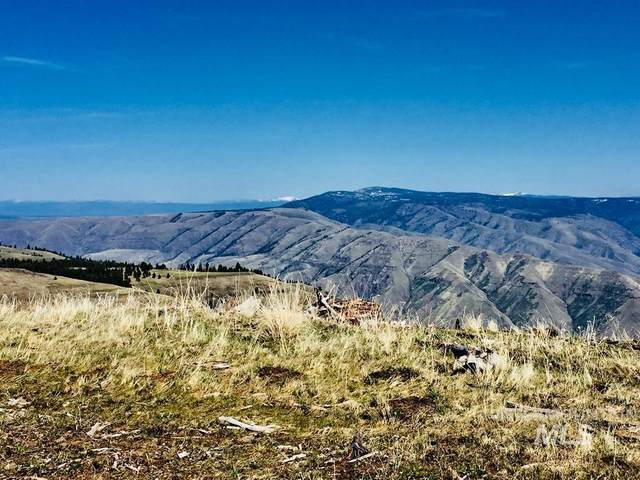 TBD Pilgrim Ridge Road, White Bird, ID 83554 (MLS #98798362) :: Team One Group Real Estate