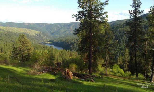 316 Suttler Creek, Kooskia, ID 83539 (MLS #98798523) :: Team One Group Real Estate