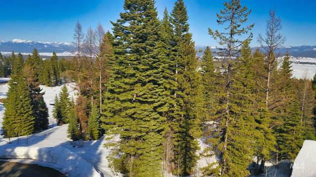 719 Whitewater Drive, Donnelly, ID 83615 (MLS #98798727) :: Build Idaho