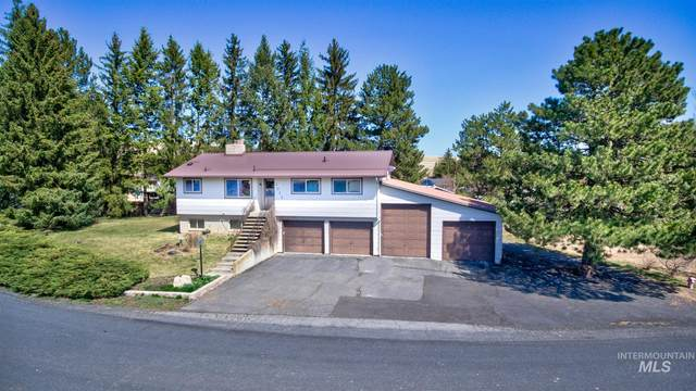 1012 Grand Fir Dr., Moscow, ID 83843 (MLS #98798739) :: Bafundi Real Estate