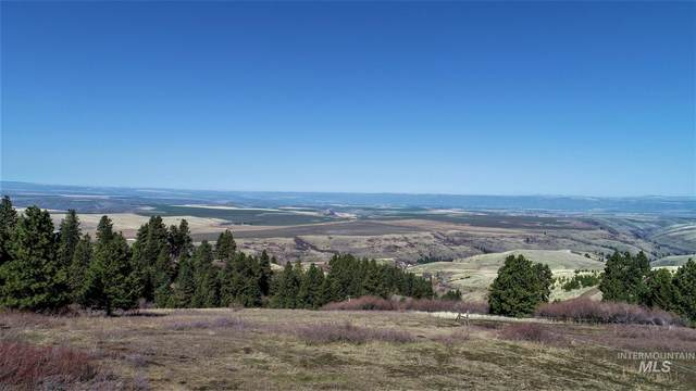 TBD Forsman Ln, Lewiston, ID 83501 (MLS #98798918) :: Jon Gosche Real Estate, LLC