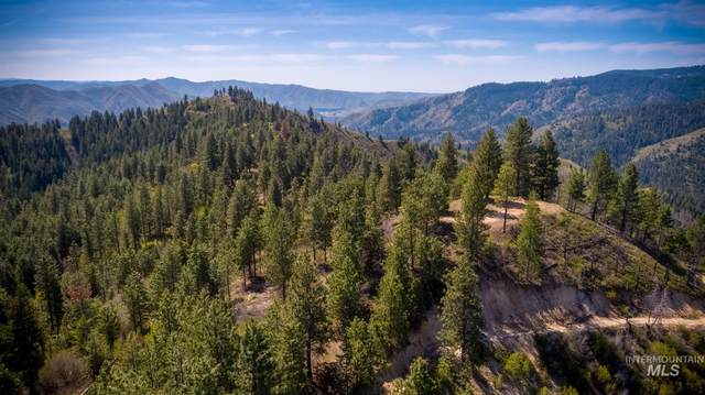 TBD Wilderness Ridge Rd, Boise, ID 83716 (MLS #98799097) :: Jon Gosche Real Estate, LLC