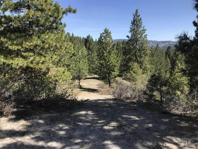 Full Moon Way, Banks, ID 83602 (MLS #98799144) :: Team One Group Real Estate