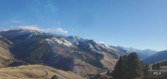 tbd Whitewater Wilderness Rd, Pollock, ID 83547 (MLS #98799170) :: Build Idaho