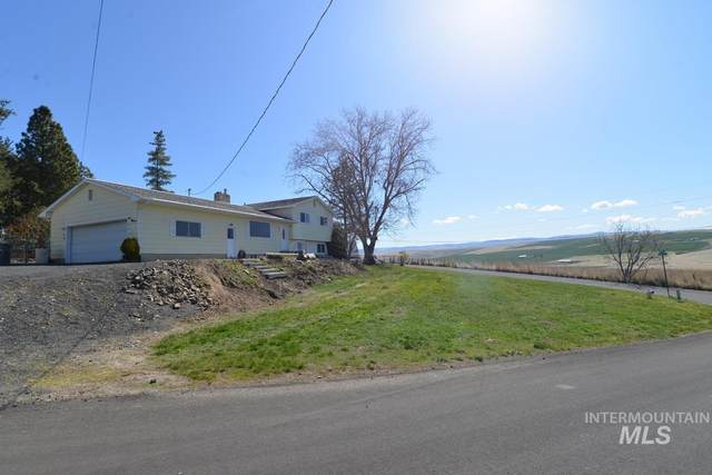 1303 Richardson Ave, Lewiston, ID 83501 (MLS #98799292) :: City of Trees Real Estate