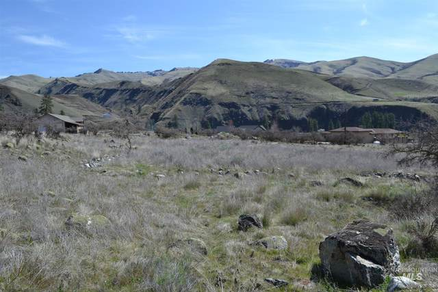 Lot 24 Mossy Point Circle, White Bird, ID 83554 (MLS #98799510) :: The Bean Team