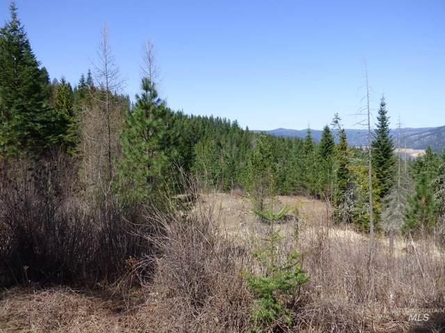 3693 Canyon Creek Road, Orofino, ID 83544 (MLS #98800012) :: City of Trees Real Estate