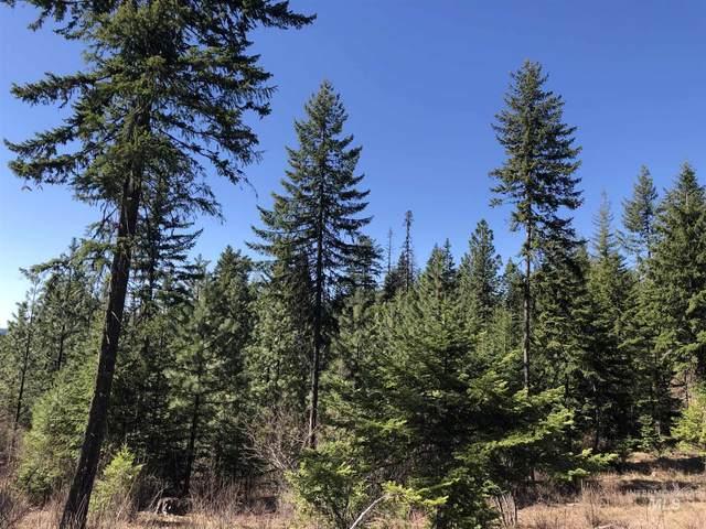 31 Bugle Ridge, Orofino, ID 83544 (MLS #98800087) :: Shannon Metcalf Realty